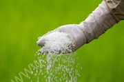 Selling Urea 46%,   Ammonium nitrate(chemical fertilizers) for export.